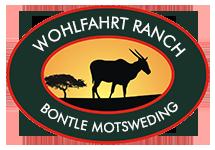 Bontle Motsweding Logo